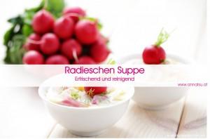 3 Wochen Durchstarter Kurs - TCM Ernährung geht ganz EINFACH - Rezept Radieschen Suppe - TCM Ernährungsberatung - Shiatsu - Anna Reschreiter