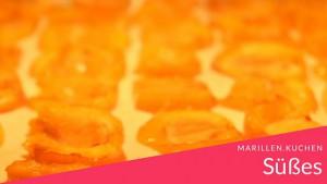 TCM Rezept Marillenkuchen - TCM Ernährungsberatung - Shiatsu - Anna Reschreiter