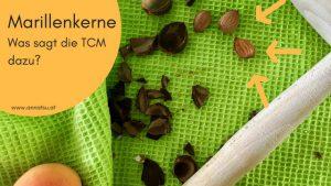 Marillenkerne Aprikosenkerne TCM - TCM Ernährung Wien - Anna Reschreiter - annatsu