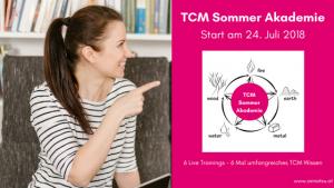 TCM Sommer Akademie - TCM Durchstarterkurs - TCM Ernährung - 5 Elemente - Ernährungsberatung - Blog Event - Anna Reschreiter